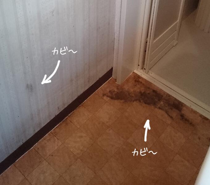 洗面所をDIY ビフォー カビだらけの床