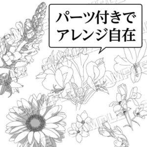 マンガ背景素材 花色々 ガーベラ
